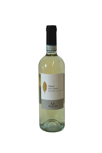 TAVO - Pinot Grigio delle Venezie I.G.P. - Ilauri